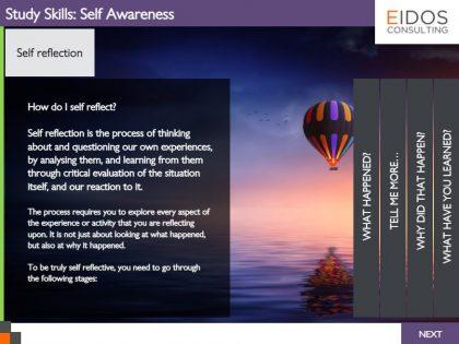 Self Awareness Module (Screenshot)
